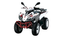 SYM Quadlander 200 or similar
